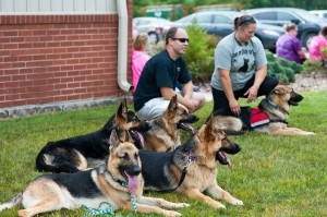 Dogs and owners took a few moments on Saturday to cool off after their morning run at the Paws For Duty 5k and 1 mile walk.
