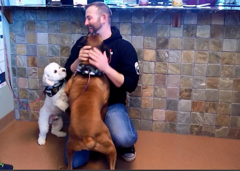 US Army Reservist Rick Peugh is reunited with his dogs Rex and Cotton this past week at Small Animal Clinic in Oskaloosa.