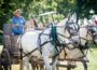 The 53rd Annual Nelson Pioneer Farm Fall festival took visitors back in time.